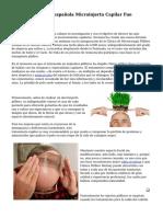 date-580fb000ed0a76.16567982.pdf