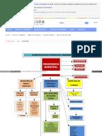 Federacion Organigrama de Municipalidad.pdf