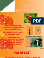 Disertación Las Mariposas Anais y Fernanda