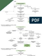 Teorías de la complejidad y las ciencias sociales.pptx