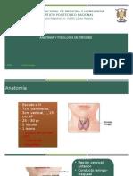1.- Anatomía y Fisiología de Tiroides
