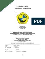 Status IGD Frischa