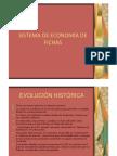PDF_economia_de_fichas.pdf