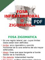 2. Fosa Zogomatica y Pterigomaxilar