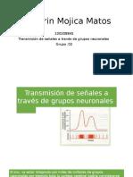 Transmision de Señales a Través de Grupos Neuronales.pptx Nueva