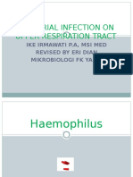 Bacterial Infection on Upper Respiratory Tract Hemofillus Moraxella Fusobacterium