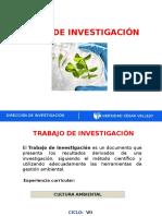 Guia Trabajo de Investigacion