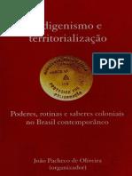 Indigenismo e Territorializacao