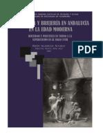Libro Magia y Brujas en Andalucia