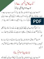 Tabeer Ur Roya Vol 2 (URDU)