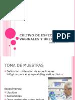 Cultivo de especímenes vaginales y uretrales.pptx