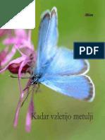 Zbornik Kadar vzletijo metulji.pdf
