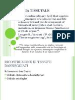 Ingegneria Tissutale. Presentazione Pato
