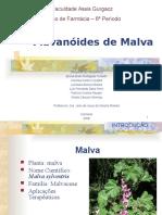 Prospecção de Flavanoides em Malva