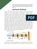 Pompa Natrium Kalium