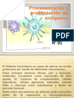Procesamiento y Presentacion de Antigeno Expo.pptxu