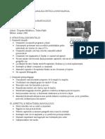 Analiza critică a unui manual
