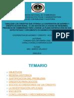 DIAPOSITIVA DE ACCION