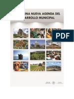 Hacia una nueva Agenda del Desarrollo Municipal