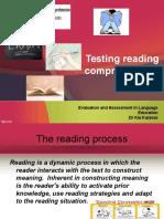 Testing Reading 2003