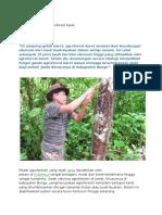 Fungsi Ganda Agroforest Karet