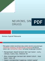 Neuron, Sinaps Anddrugs