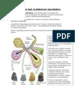 Patologia Das Glandulas Salivares 1