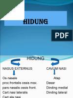 HIDUNG_03