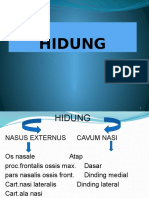 HIDUNG