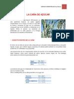 TRABAJO DE RECURSOS AGROINDUSTRIALES