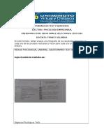 Formato Portafolio Pruebas (2) (1)