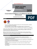 Cross Cultural Intelligence in the Malaysian Working Environment