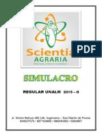 SIMULACRO 12