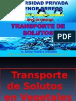 Transporte Solutos 2012-c