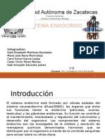 Sistema Endócrino 2D