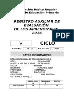 Registro Auxiliar 2015-Yanama