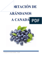 Arandanos a Canada Monografia Final