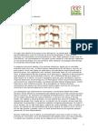 Origen e Historia del caballo.pdf