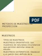 114092419-Muestreo-y-Sondajes.pptx