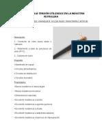ELECTRICIDAD PUNTO 2.docx