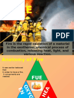 Fire Fuel Hydrocarbon (1)