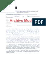 02-Modelo Designacion SUPERVISOR (2)