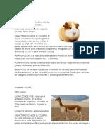 238364584-Animales-Nativos-y-Del-Peru.docx