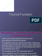 Thyroid Function 2