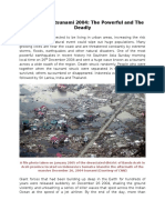 Indian Ocean Tsunami 2004