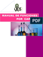 250437223-Manual-de-Funciones.docx