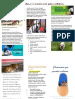 TripticoDiazMosqueda1°terminado.pdf