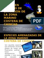 flora y fauna  peligro de extincion chincha
