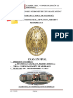 108666068-Examen-Final-Comercializacion-de-Minerales.docx