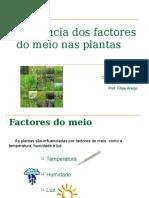 Influência Dos Factores Do Meio Nas Plantas
